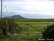 Morga Nefyn in Wales
