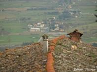 Terrat a la Toscana