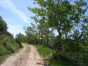 Caminada per L'Estany