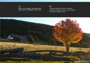 Proyecto 365 - 5