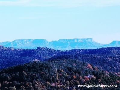 Cingles desde Puig Caritat