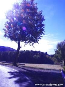 Carretera frente Sant Feliuet