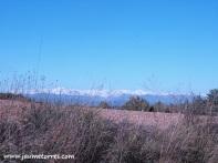 Vistas a los Pirineos