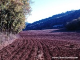 Campo labrado en L'Estany