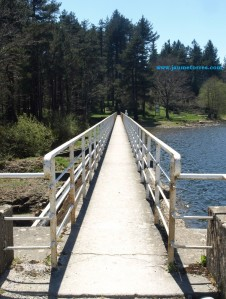 Lac des Montagnès - puente