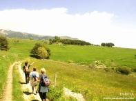 Camino de Lles de Cerdanya