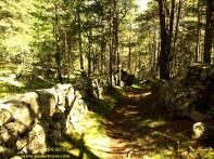 Camino del Tor - Músser