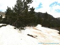 Nieve acumulada en la cima