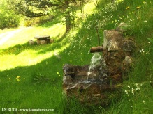 Fuente en zona de picnic