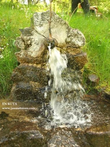 Fuente en zona de picnic 2