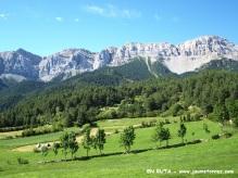 Prados verdes II (Estana)