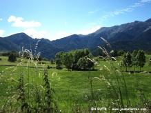 Prados verdes (Estana)