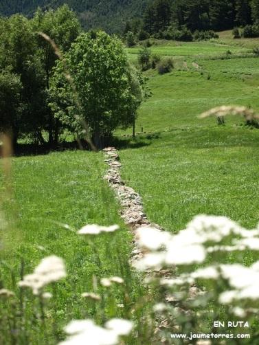 Muro separación de piedra (Estana)