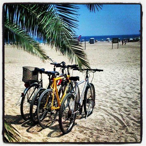 Viajando en bici